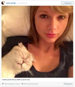 Taylor Swift et son chat