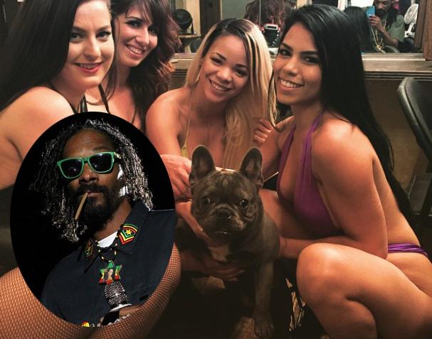 Snoop Dogg ouvre un compte Instagram pour son chien